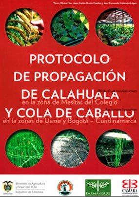 Protocolo de propagación de calahuala y cola de caballo