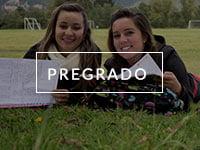 pregrado-1