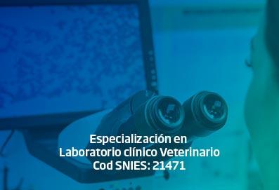 espec_lab_clinico_vet