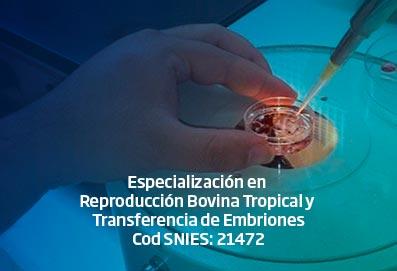 espec_reproduccion_bovina_tropical