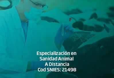 espec_sanidad_animal_DISTANCIA