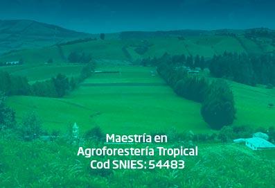 maestria_agroforesteria_tropical