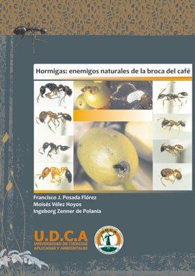 Hormigas: Enemigos naturales de la broca del café